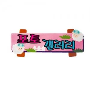 청양코리아 5.포토 갤러리 펠트글자 (소)완성품, 개